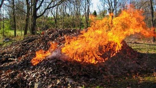 Спалювання сміття. Що робити?